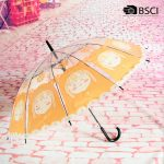 12k-transparent-clear-umbrella-01