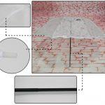 3-folding-transparent-umbrella-01