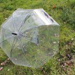 clear-umbrella-02