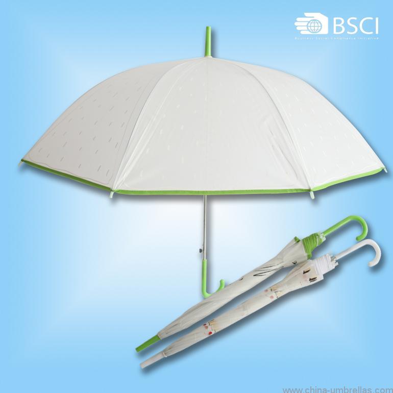 eva-translucence-umbrella-discount-free-inspection-05