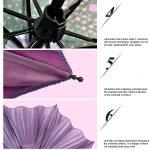heat-transfer-printing-3-folding-sunflower-umbrella-03
